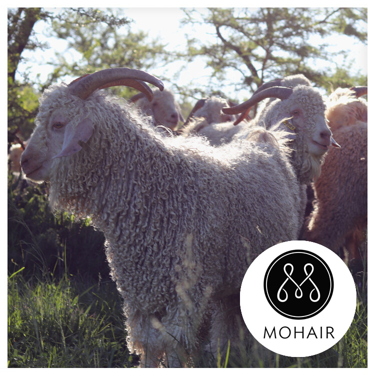 FIBRE FEATURE: MOHAIR